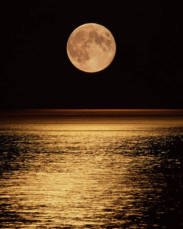 Round Shape Poster featuring the photograph Moonrise by David Nunuk