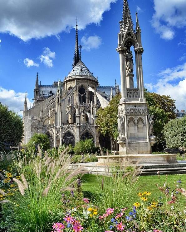 Notre Dame Cathedral Poster featuring the photograph Notre Dame Gardens by Michael Biggs