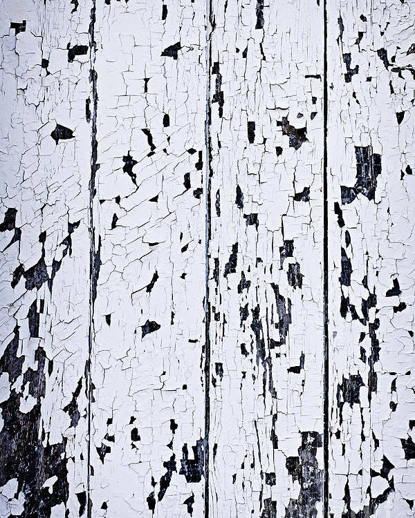Old Poster featuring the photograph Old Painted Wood Abstract by Elena Elisseeva