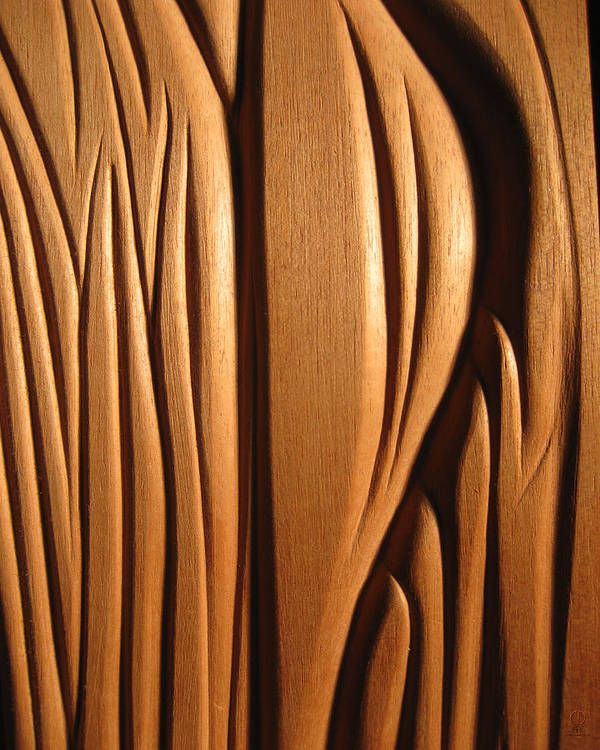 Organic Poster featuring the sculpture Organic Mahogany Shapes by Charles Dancik