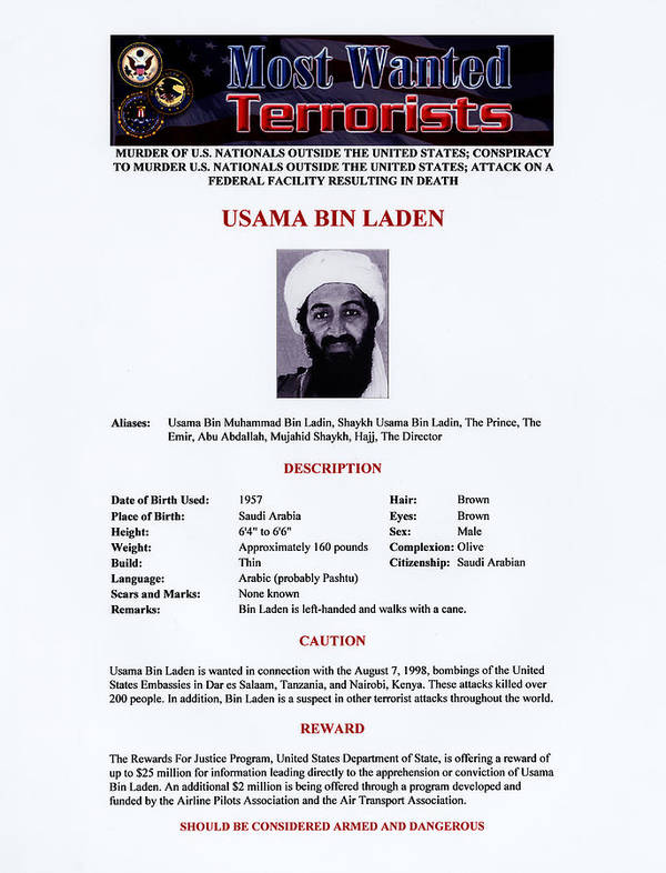 1990s Poster featuring the photograph Osama Bin Laden, Militant Islamist by Everett