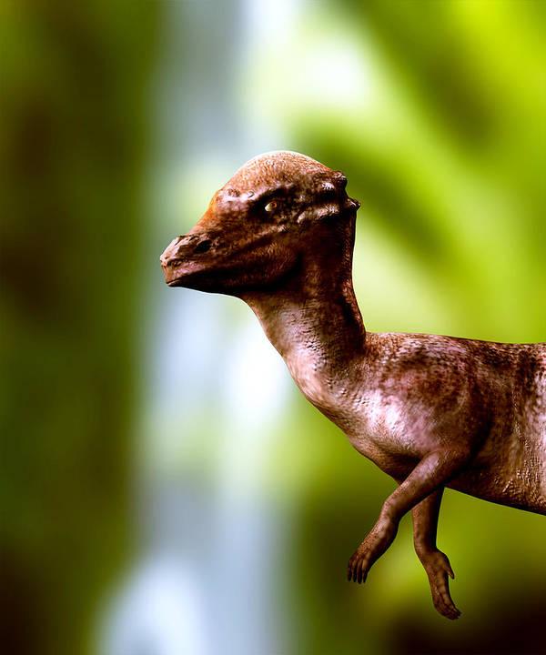 Pachyosaurus Poster featuring the photograph Pachyosaurus Dinosaur by Christian Darkin