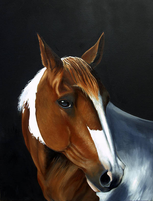 Horse Poster featuring the painting Patches by Michele Snell