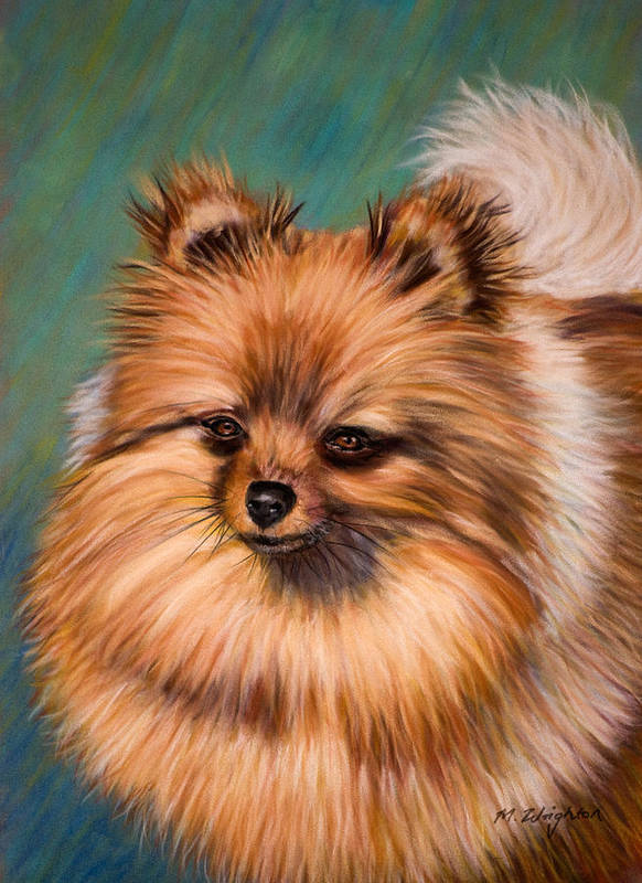 Pomeranian Poster featuring the painting Peaches And Cream by Michelle Wrighton