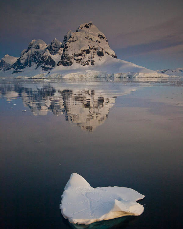 00479586 Poster featuring the photograph Peak On Wiencke Island Antarctic by Colin Monteath