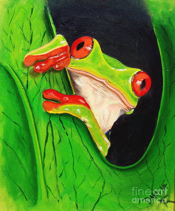Red Eyed Tree Frog Poster featuring the painting Peeking out by Darlene Green