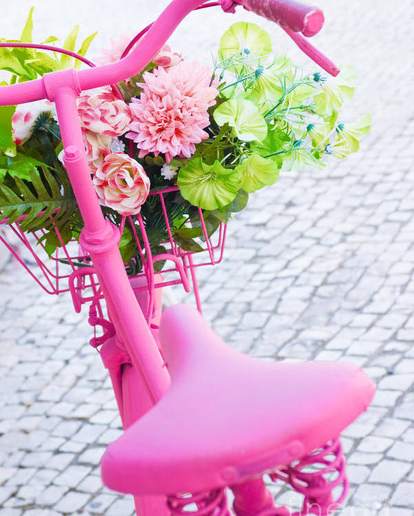 Angle Poster featuring the photograph Pink Bicycle by Carlos Caetano