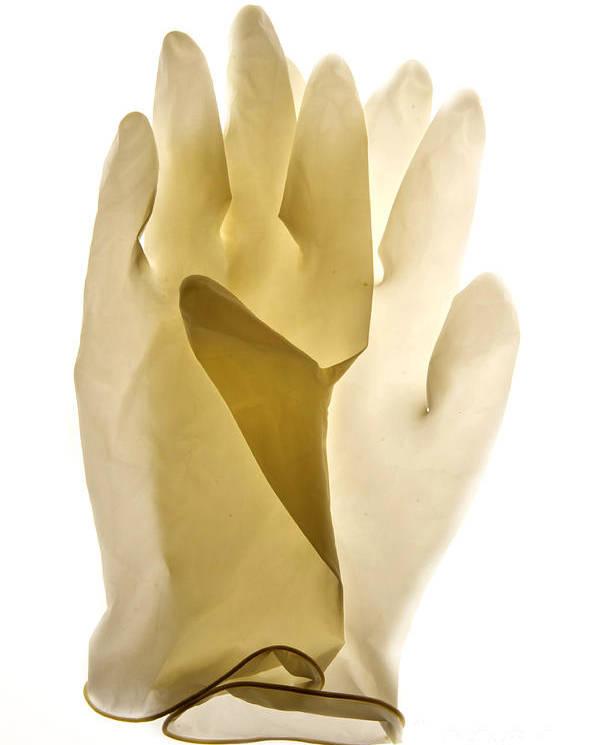 Views Poster featuring the photograph Plastic Gloves by Bernard Jaubert