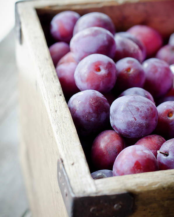 Vertical Poster featuring the photograph Plums by Marju Randmer