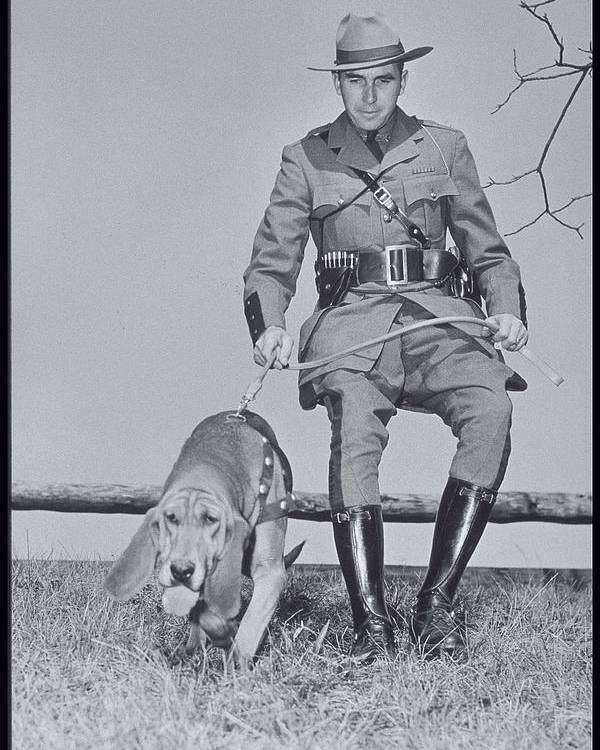 30-34 Years Poster featuring the photograph Policeman And His Dog Walking, 1950s by Archive Holdings Inc.