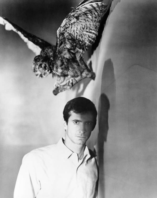 1960 Movies Poster featuring the photograph Psycho, Anthony Perkins, 1960 by Everett
