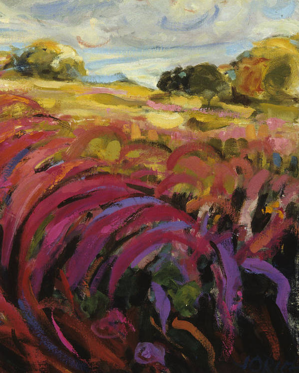 Purple Loosestrife Poster featuring the painting Purple Loosestrife by Jane Oriel