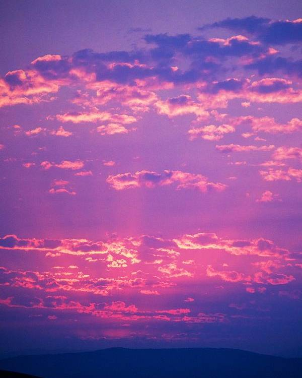 Sunset Poster featuring the photograph Purple Sky by Kevin Bone