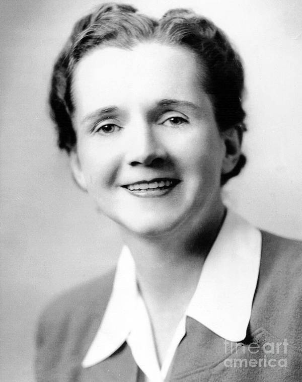 1944 Poster featuring the photograph Rachel Carson (1907-1964) by Granger