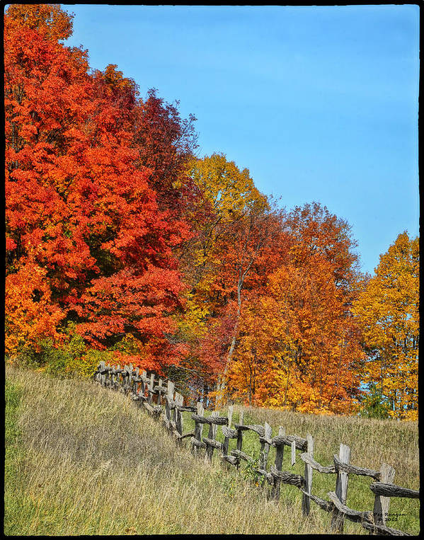 Autumn Colors And A Rail Fence Poster featuring the photograph Rail Fence In Fall by Peg Runyan