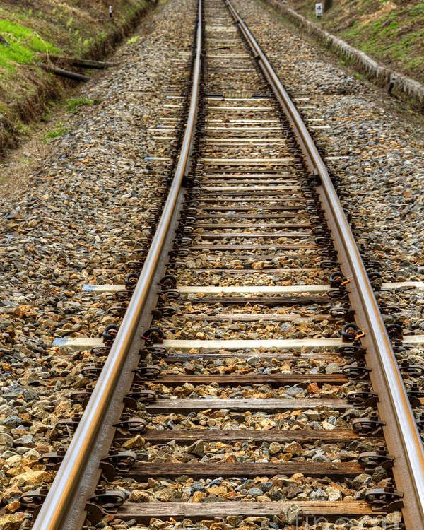 Rail Poster featuring the photograph Rail Way by Tad Kanazaki