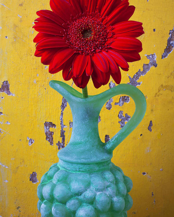 Red Poster featuring the photograph Red Daisy In Grape Vase by Garry Gay