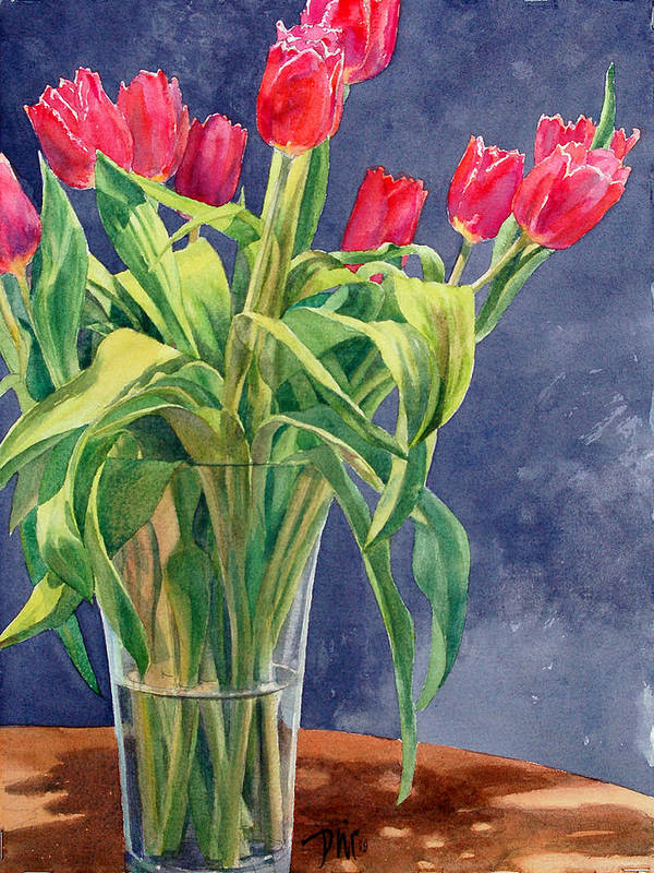 Peter Sit Watercolor Poster featuring the painting Red Tulips by Peter Sit