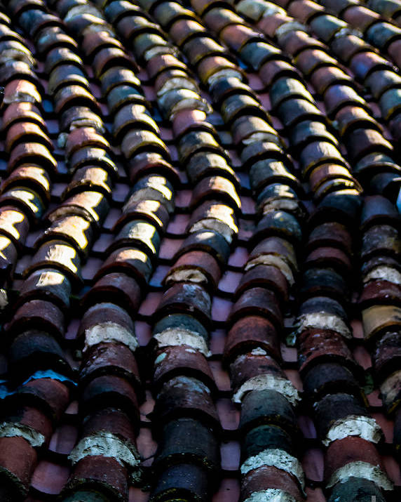 Roof Tiles Poster featuring the photograph Roof Tiles 2 by Mitch Shindelbower