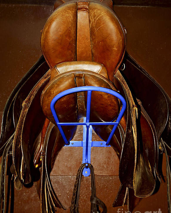 Saddle Poster featuring the photograph Saddles by Elena Elisseeva