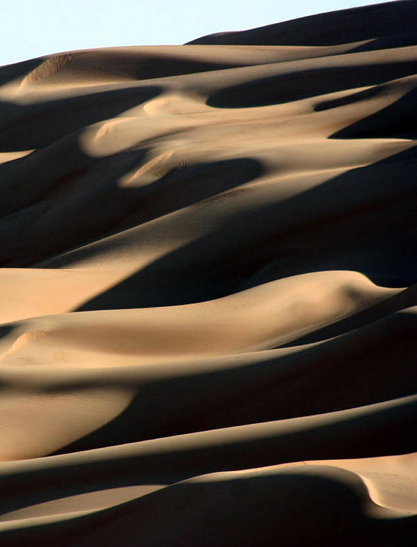 Vertical Poster featuring the photograph Sahara Sand Shadows by Joe & Clair Carnegie / Libyan Soup