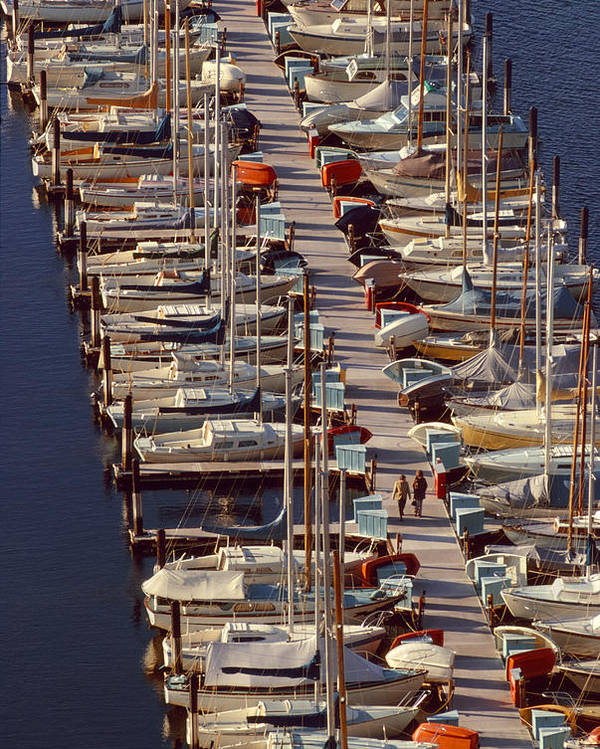 Vertical Poster featuring the photograph Sailboats At Moorage by Harald Sund