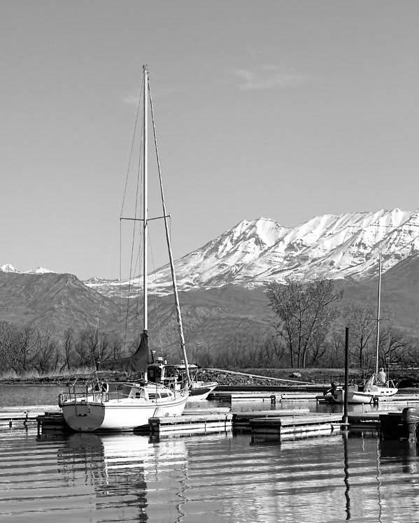 Sailboats Poster featuring the photograph Sailboats At Utah Lake State Park by Tracie Kaska