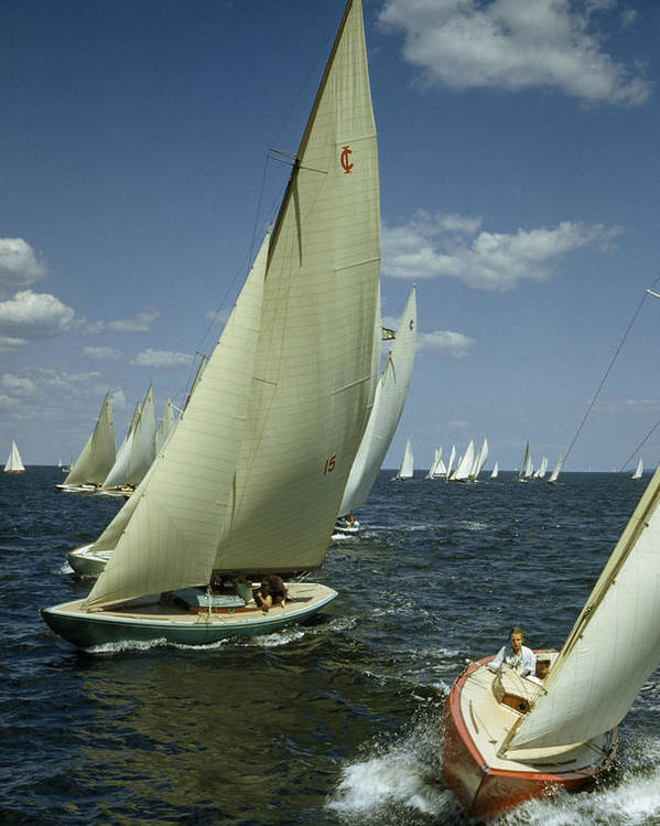 Outdoors Poster featuring the photograph Sailboats Cross A Starting Line by B. Anthony Stewart