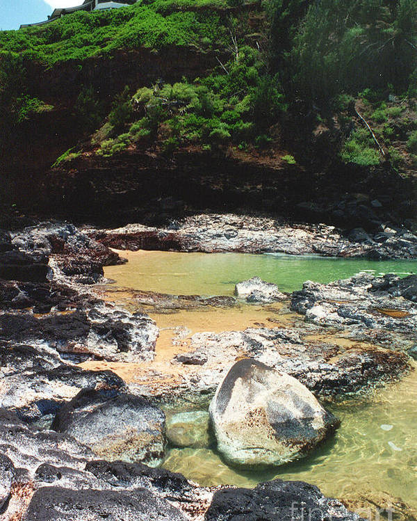 Swimming Hole Poster featuring the photograph Salty Swim by Bruce Borthwick