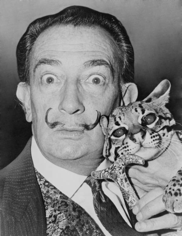 History Poster featuring the photograph Salvadore Dali 1904-1989, Eccentric by Everett