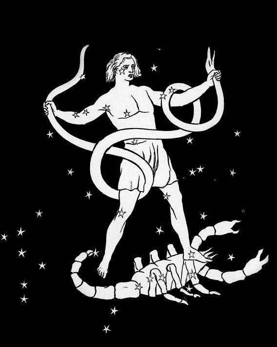Scorpio Poster featuring the photograph Scorpio And Ophiuchus Constellations by