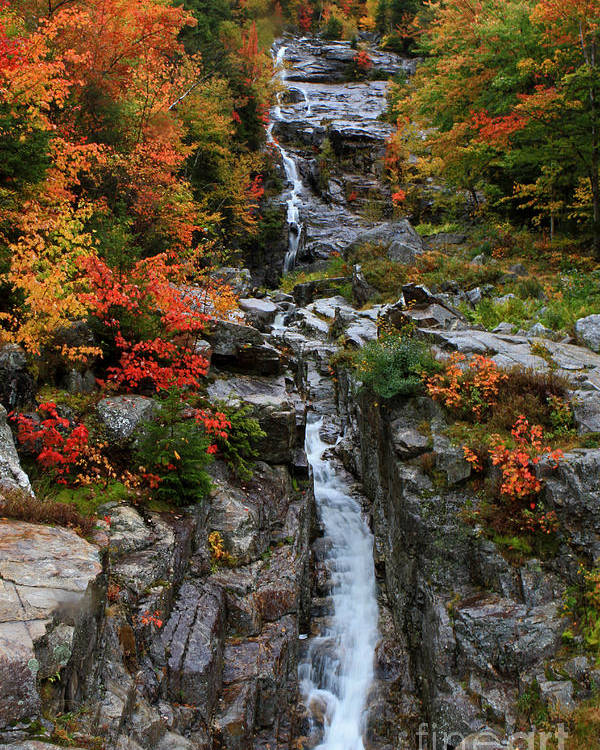 Fall Poster featuring the photograph Silver Cascades Surrounded By Colors by Lloyd Alexander