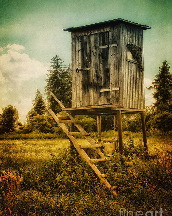 Photo Poster featuring the photograph Small Cabin With Legs by Jutta Maria Pusl