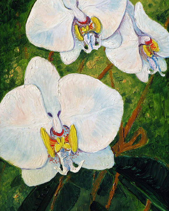 Orchids Poster featuring the painting Snowy Ladies by Tanja Ware