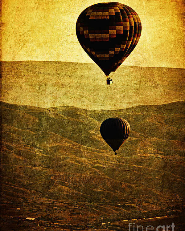 Hot Poster featuring the photograph Soaring Heights by Andrew Paranavitana