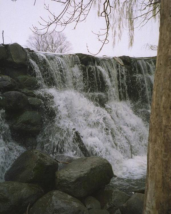 Landscape Poster featuring the photograph Spring Falls by Annella Grayce