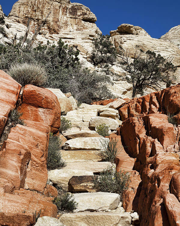 Steps Poster featuring the photograph Staircase Stones by Kelley King