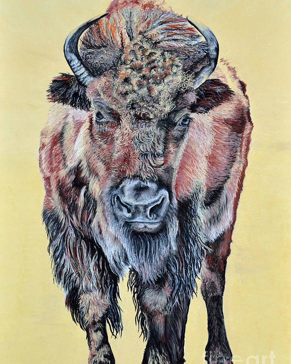Buffalo Poster featuring the pastel Stand Strong by Ann Marie Chaffin