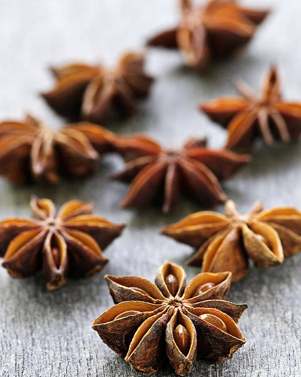 Star Anise Poster featuring the photograph Star Anise Fruit And Seeds by Elena Elisseeva