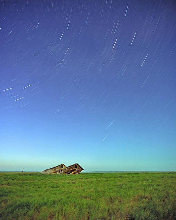 Light Poster featuring the photograph Star Trails Over Old Barns, Saskatchewan by Robert Postma