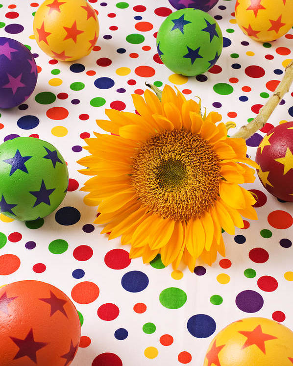 Sunflower Poster featuring the photograph Sunflower And Colorful Balls by Garry Gay