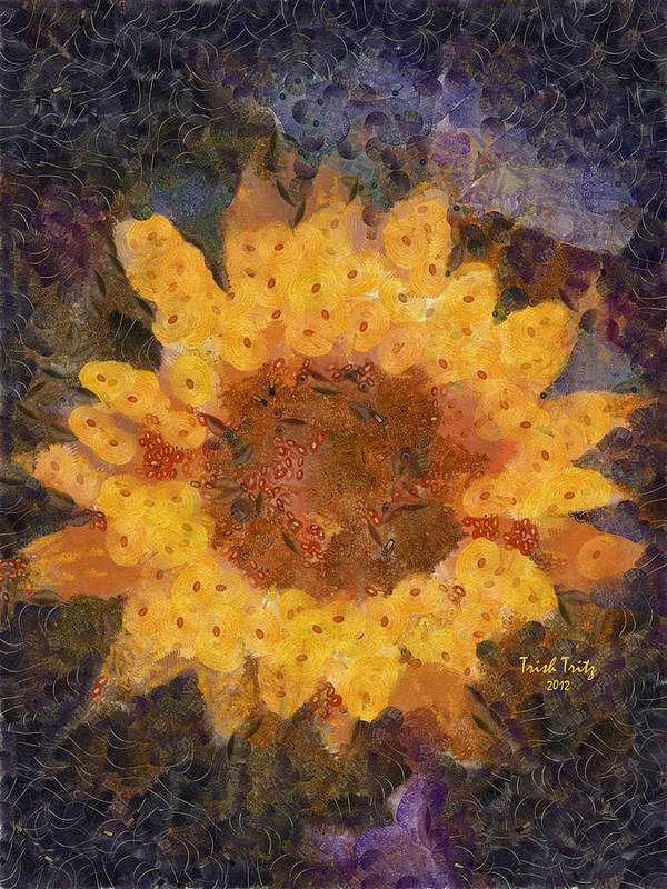 Flower Poster featuring the photograph Sunflower Season by Trish Tritz