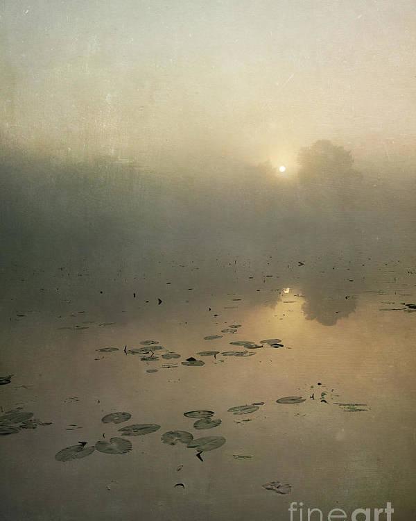 Sunrise Through Mist Poster featuring the photograph Sunrise Through Mist by Paul Grand
