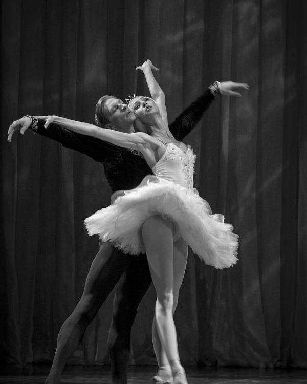 Hermitage Poster featuring the photograph Swan Lake White Adagio Russia 2 by Clare Bambers