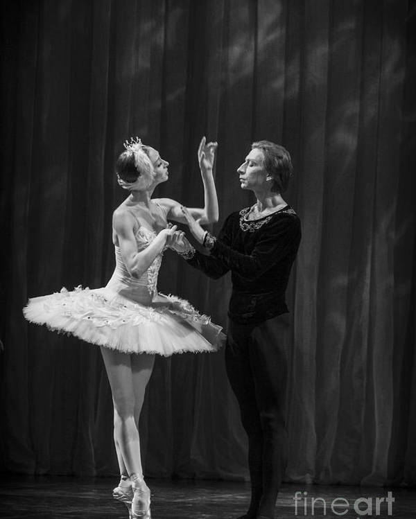 Hermitage Poster featuring the photograph Swan Lake White Adagio Russia by Clare Bambers