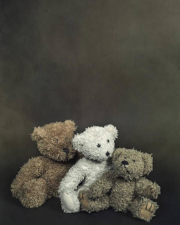 Teddy Poster featuring the photograph Teddy Bear Family by Joana Kruse