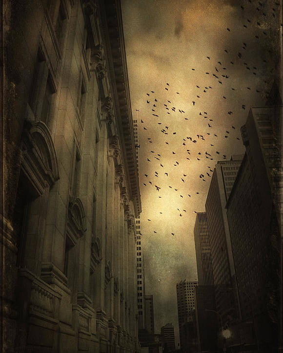 Urban Poster featuring the photograph The Birds by Peter Labrosse