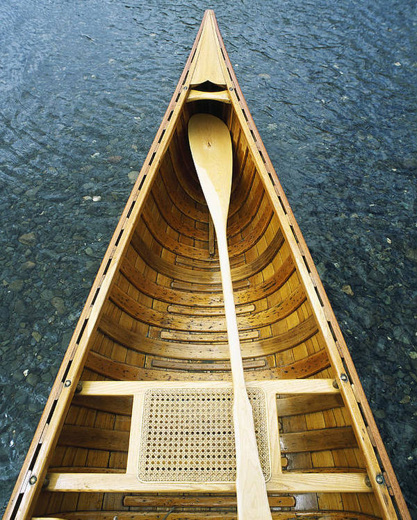 The Bow And Oar Of A Handmade Wooden Canoe Resting In Water. Poster featuring the photograph The Bow And Oar Of A Handmade Wooden by Bill Curtsinger