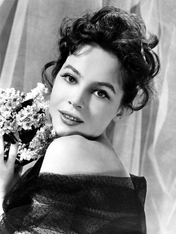 1950s Portraits Poster featuring the photograph The Doctors Dilemma, Leslie Caron, 1958 by Everett