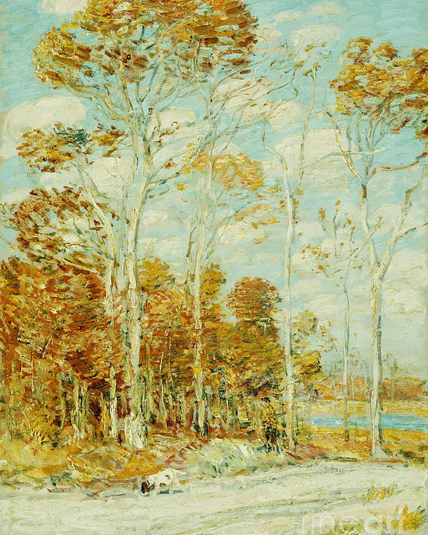 The Hawk's Nest Poster featuring the painting The Hawk's Nest by Childe Hassam